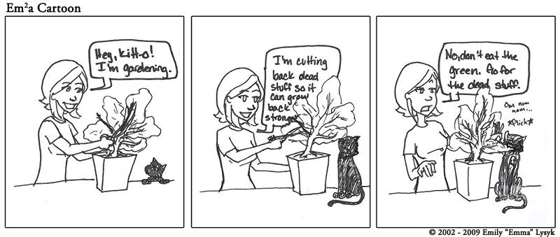 To Teach a Kitteh to Garden